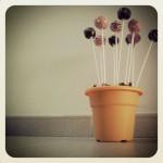 cakepop4